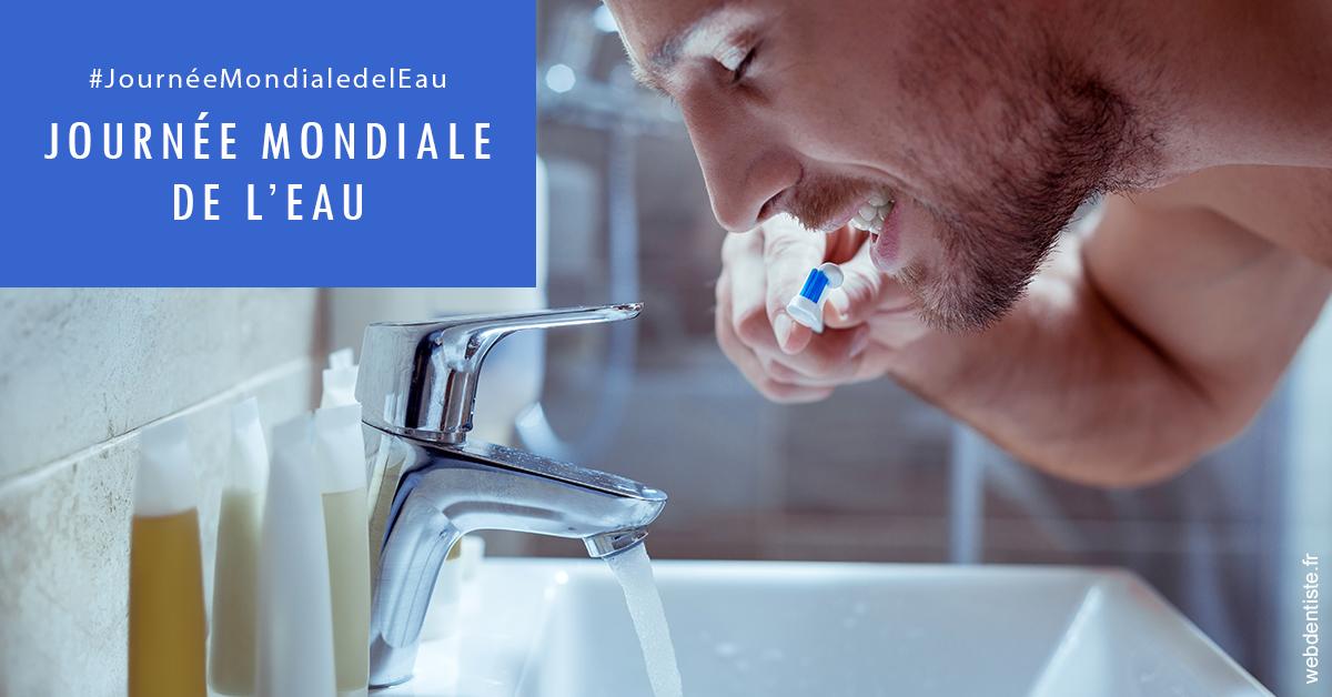 https://dr-laupie-julien.chirurgiens-dentistes.fr/Journée de l'eau 2